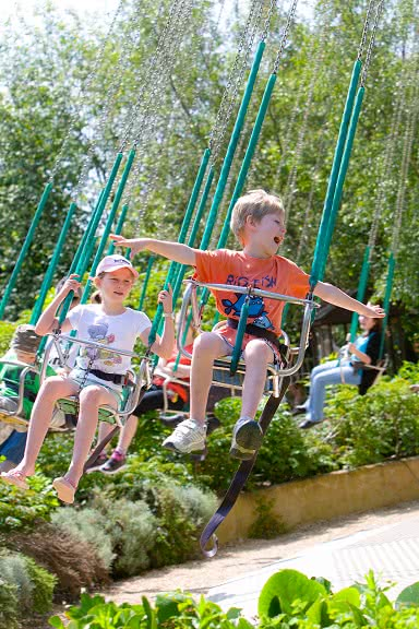 Children enjoying a ride on the Tree Top Swings